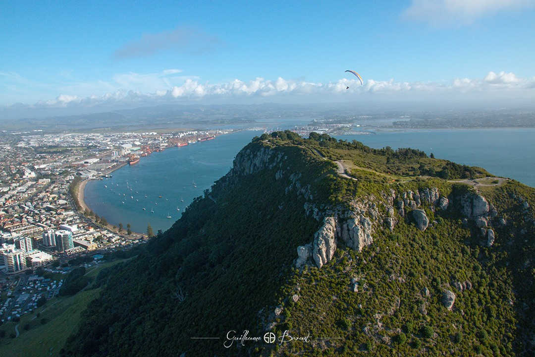 Paragliding in Mt Maunganui - Frequent Flyers ©Guillaume Broust