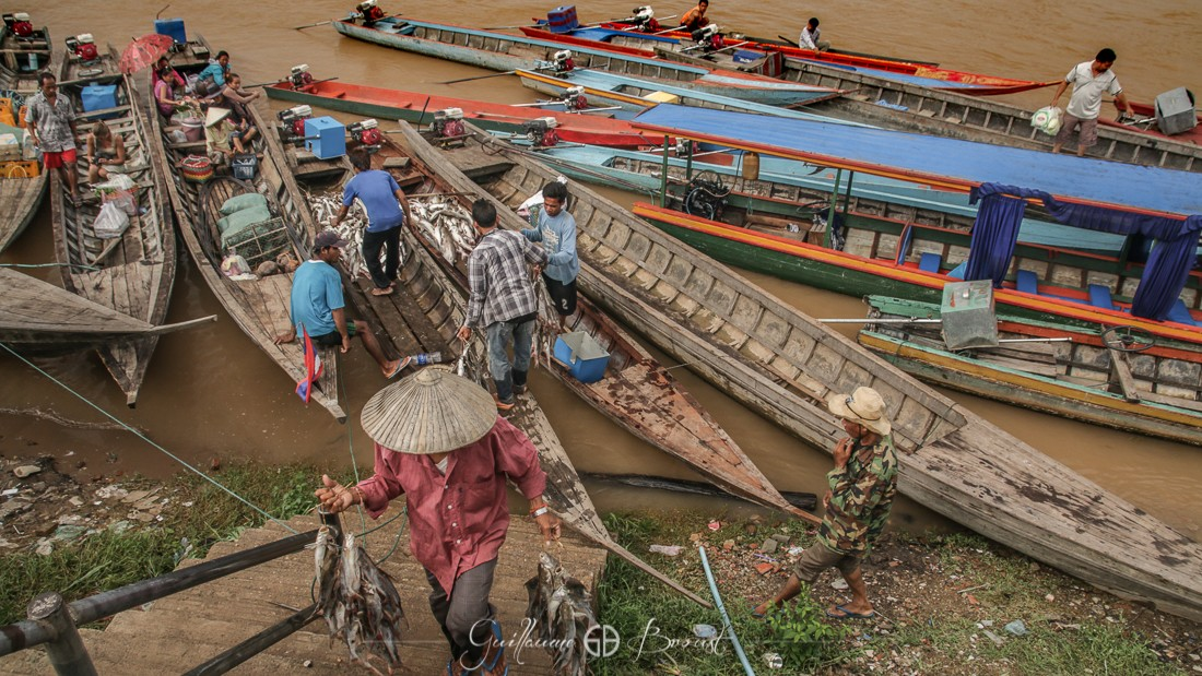 Fishing market in Laos - 4000 islands ©Guillaume Broust - Les Chants de l'Eau