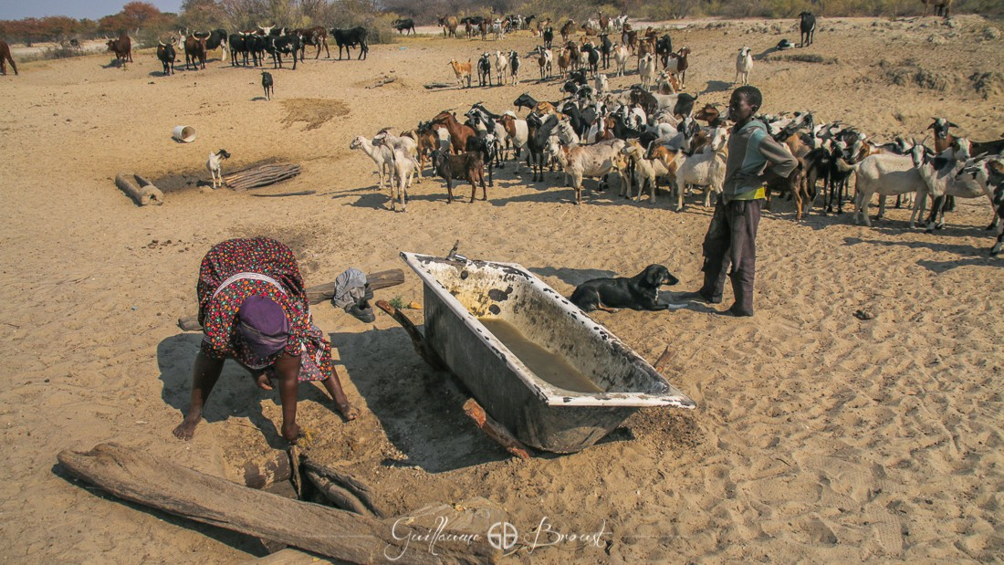 Digging water for livestock - Water ressources - Namibia - ©Guillaume Broust - Les Chants de l'Eau